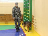 police-dog-check-2020